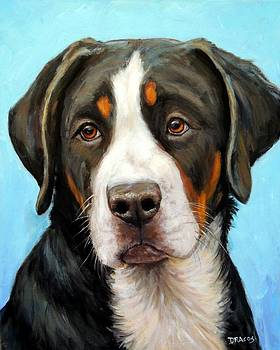 Greater Swiss Mountain Dog Pup by Dottie Dracos
