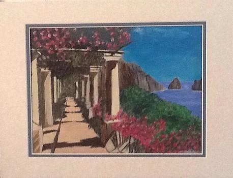 Greek Garden by Catherine Swerediuk