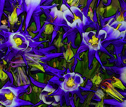 Green and Purple Burst Abstract by James Hammen