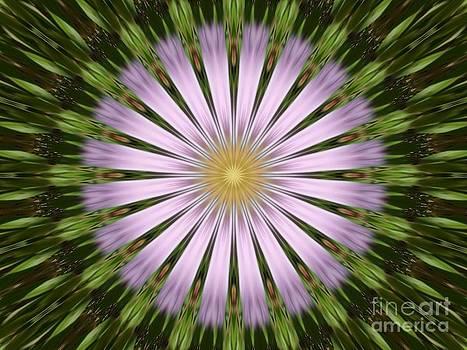 Green and Purple Starburst by Spirit Baker