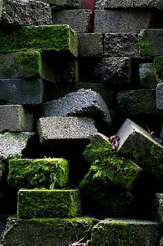 Green Bricks by Anthony Bean