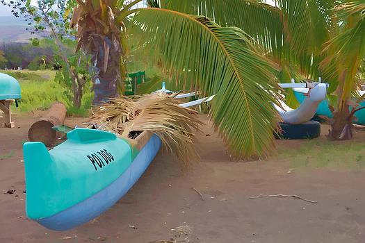 Green canoe by Esther Branderhorst