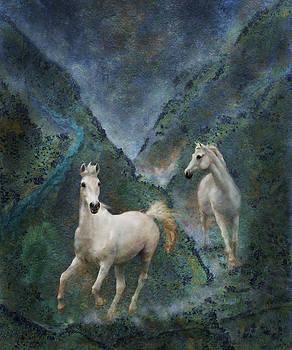 Green Canyon Run by Melinda Hughes-Berland