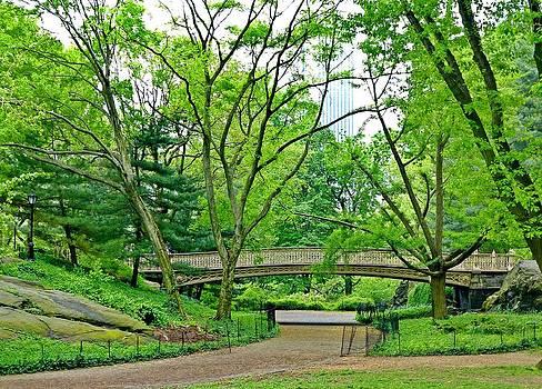 Green Central Park by Frank Garciarubio