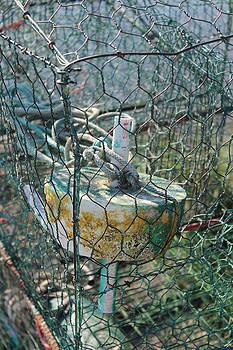 Green Crabbing Basket by Renee Braun