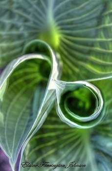 Green by Elaine Farrington Johnson