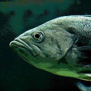Art Block Collections - Green Fish