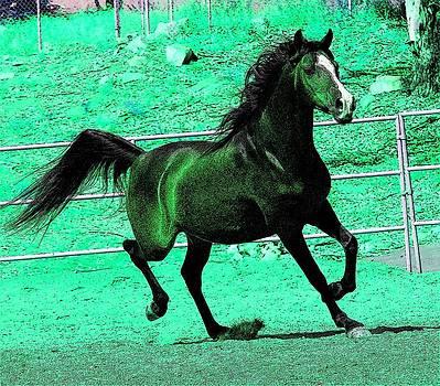 Green Goddess Horse by Kathy Budd