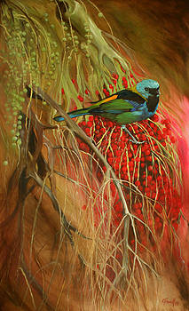Green-headed Tanager on Palm Berries by Kitty Harvill