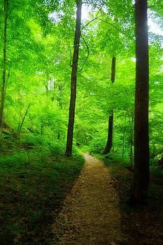 Emily Stauring - Green Journey