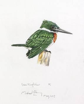 Michael Earney - Green Kingfisher