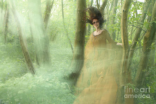 Angel  Tarantella - Green Mist