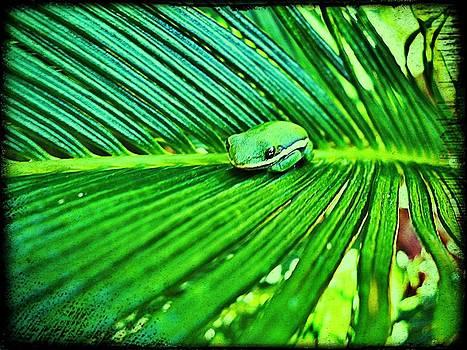 Green On Green by David Sanchez