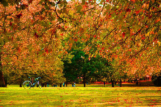 David French - Green Park autumn London