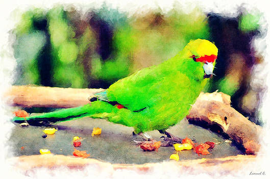 Green Parrot by Lemuel Conde