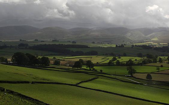 Green Pastures by Deborah Jahier