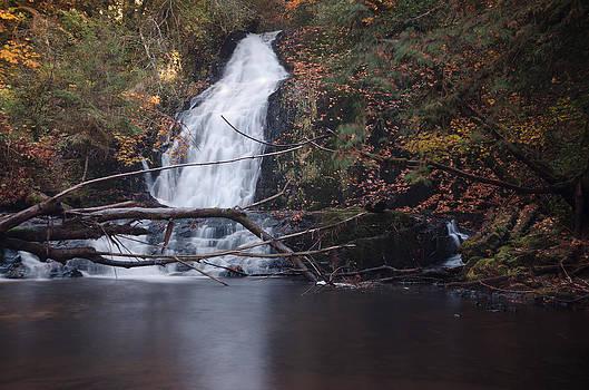 Margaret Pitcher - Green Peak Falls