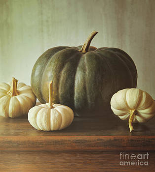 Sandra Cunningham - Green pumpkin and small white gourds