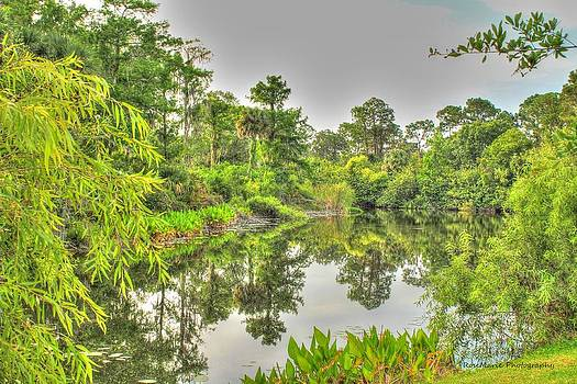 Green reflection by Vanessa Parent