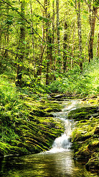 Weston Westmoreland - Green River No2