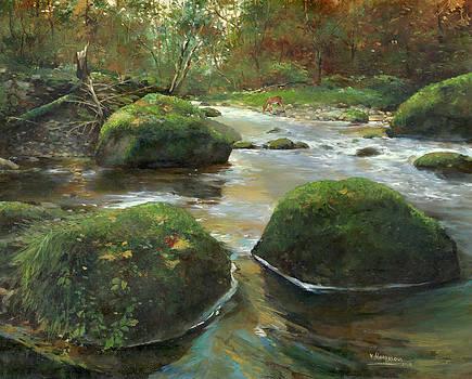 Green rocks by Victor Mordasov