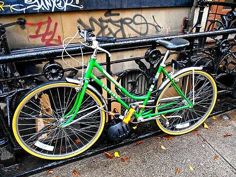 Green Schwinn Bike  NYC by Joan Reese