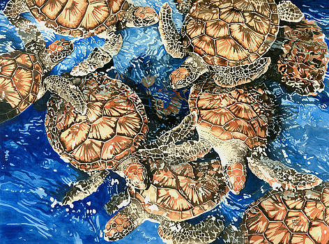 Pauline Walsh Jacobson - Green Sea Turtles
