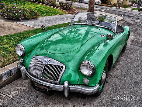 Green Sport by Bob Winberry