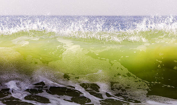 Green Summer Wave 1 by Maureen E Ritter
