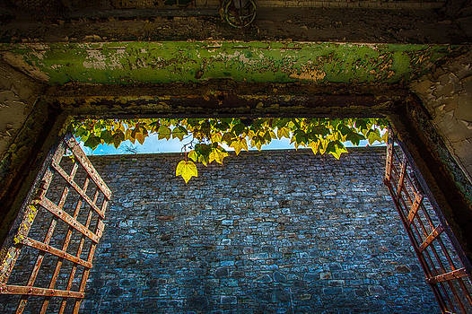 Green Threshold by John Dryzga