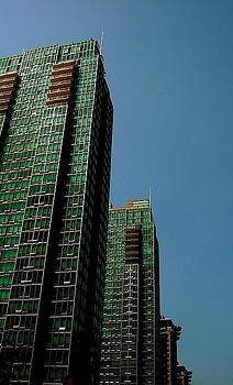 Green Vancouver Towers by Gregory Merlin Brown