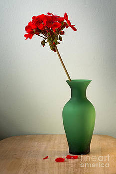 Green Vase by Donald Davis