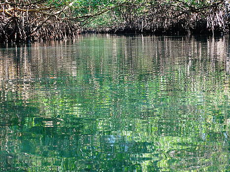 Frederic BONNEAU Photography - Green Waters