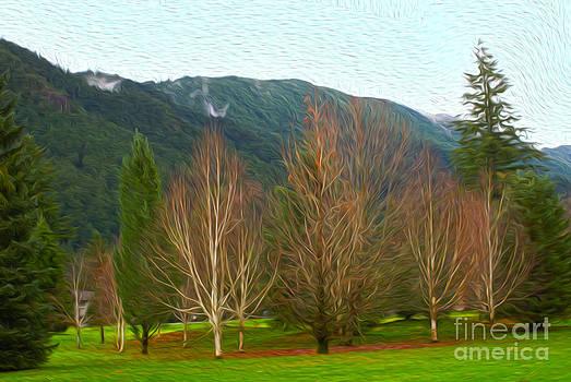 Green winter by Nur Roy