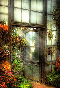 Mike Savad - Greenhouse - The door to paradise