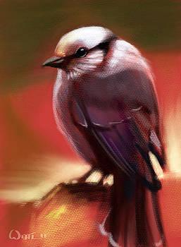 Grey Jay by  Edward Joel Wittlif