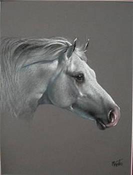 Grey Or Gray by Mahto Hogue