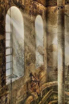 Greystone Asylum by Kim Zier