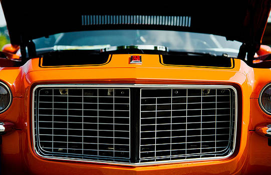 Grille II  by Off The Beaten Path Photography - Andrew Alexander