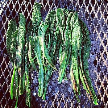 #grilling The Kale On My #solo by Kurt Iswarienko