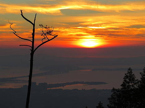 Grizzly Peak Sunset by Brian Maloney