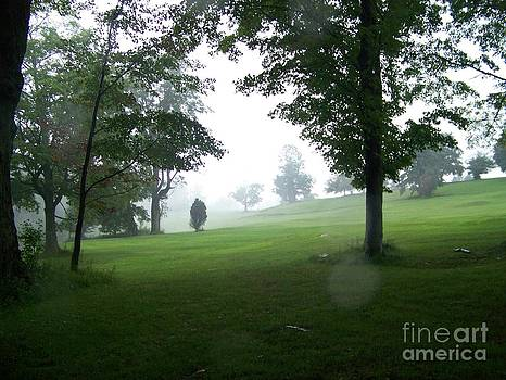 Grossinger Golf Course Rainy Day  by Kevin Croitz