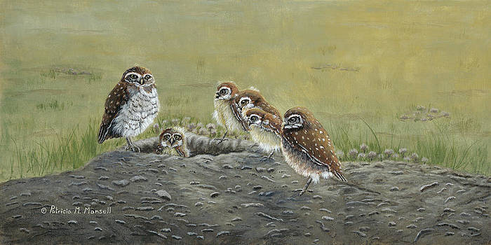 GROUND OWLS-Burrowing Owls by Patricia Mansell