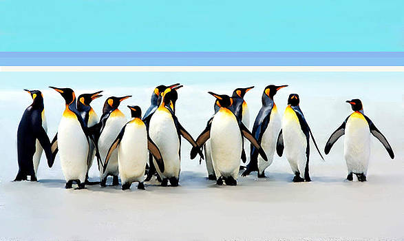 Group of Penguins by Helen Stapleton