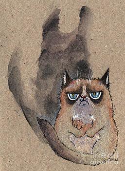 Angel  Tarantella - grumpy cat and her shadow