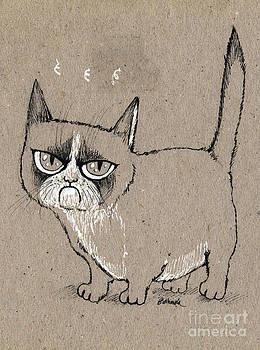 Angel  Tarantella - grumpy cat is grumpy today