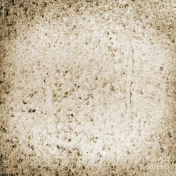 Tim Hester - Grunge Canvas Texture