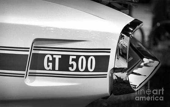 Gt 500 by  Nick Solovey