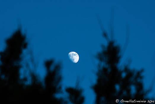 Ornella Erminio - Guarda Che Luna