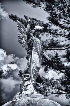 Wayne Stacy - Guardian Angel